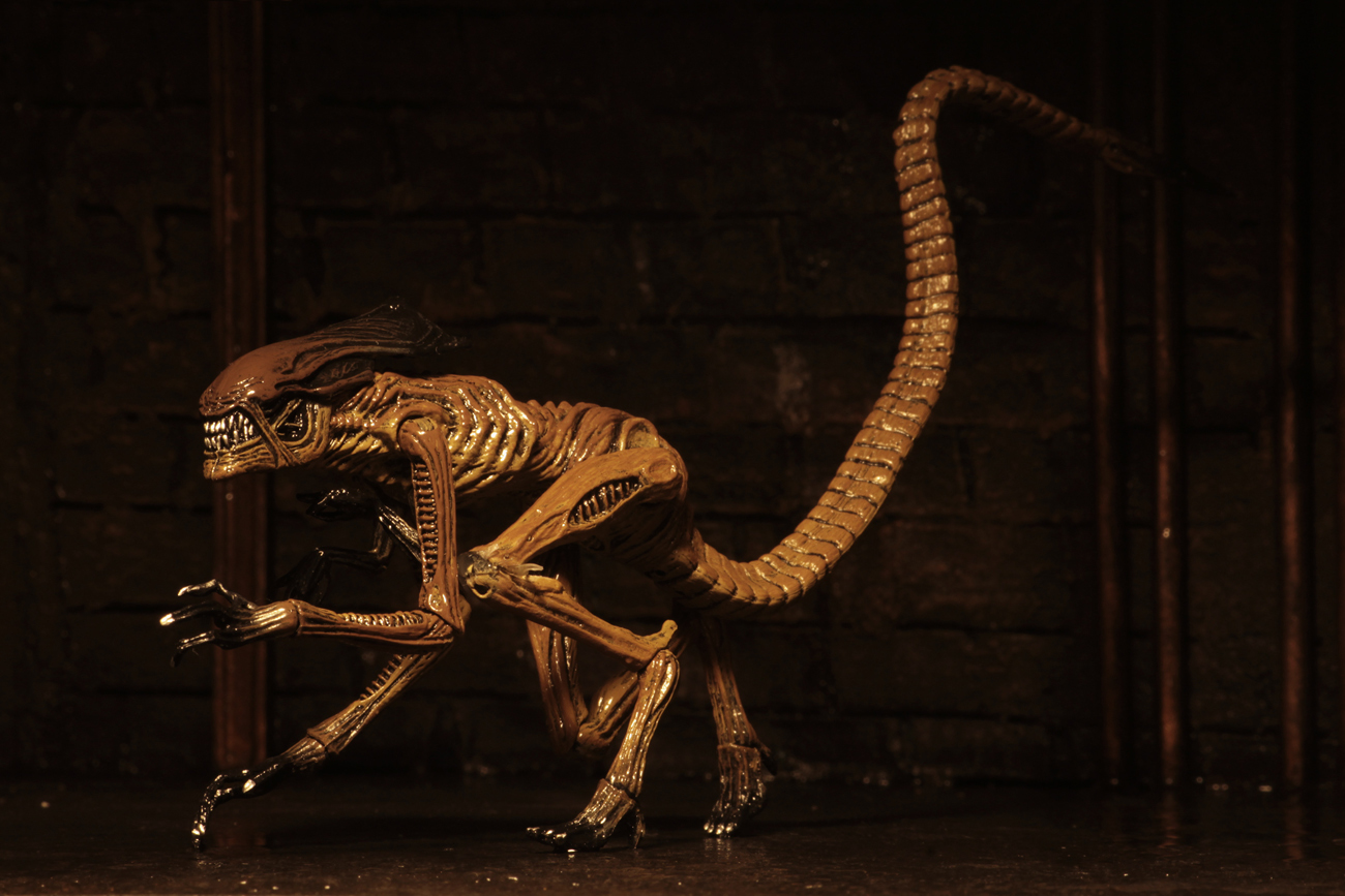 "Alien 3: Creature Accessory Pack - (Scales with 7"" Figures) image"