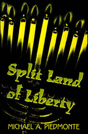 Split Land of Liberty by Michael A. Piedmonte image