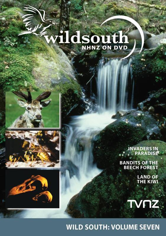Wild South - Volume 7 on DVD