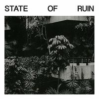 State Of Ruin by SILK ROAD ASSASSINS