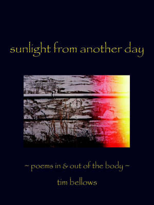 Sunlight From Another Day by Tim Bellows