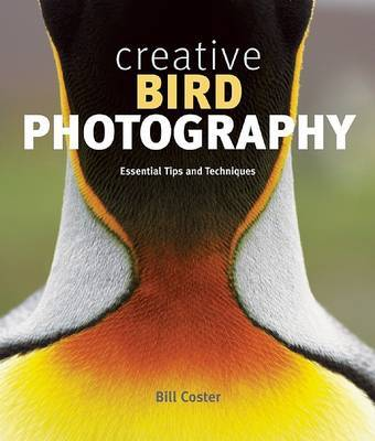 Creative Bird Photography by Bill Coster