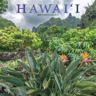 Hawaii 2019 Square Wall Calendar by Inc Browntrout Publishers