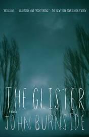 The Glister by John Burnside image