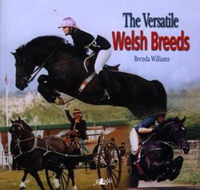 The Versatile Welsh Breeds: Breeding and Working the Welsh Cobs by Brenda Williams image