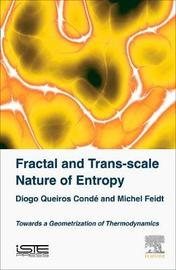 Fractal and Trans-scale Nature of Entropy by Diogo Queiros Conde image