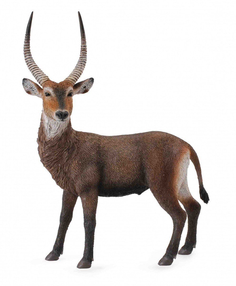 CollectA - Waterbuck image