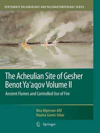 The Acheulian Site of Gesher Benot Ya'aqov Volume II by Nira Alperson-Afil