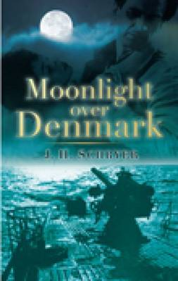 Moonlight over Denmark by J H Schryer