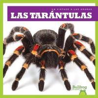 Las Tarantulas (Tarantulas) by Kristine Spanier image
