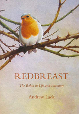 Redbreast by Andrew Lack image