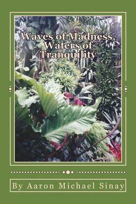 Waves of Madness, Waters of Tranquility by Aaron, Michael Sinay image