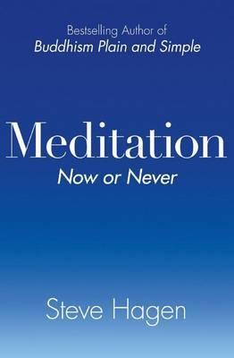 Meditation Now or Never by Steve Hagen image