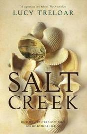 Salt Creek by Lucy Treloar image
