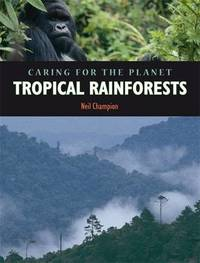 Rainforest by Nigel Champion image