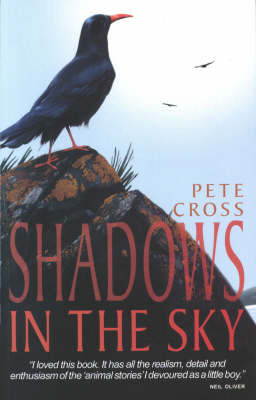 Shadows in the Sky by Pete Cross