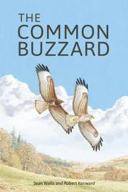 The Common Buzzard by Sean Walls