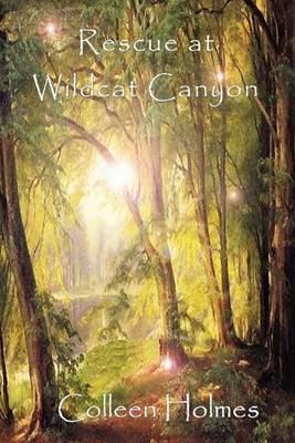 Rescue at Wildcat Canyon by Colleen Duncan