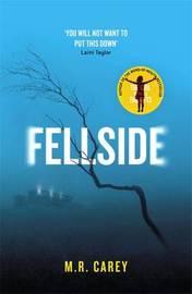 Fellside by M R Carey image