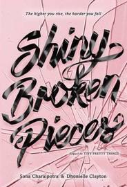 Shiny Broken Pieces by Sona Charaipotra