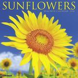 Sunflowers 2018 Wall Calendar by Willow Creek Press