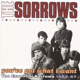 You've Got What I Want by The Sorrows