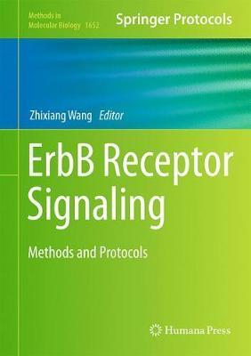 ErbB Receptor Signaling image