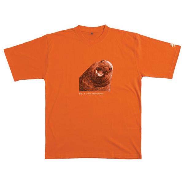 Lolrus Sansbucketus - Tshirt (Orange) for  image