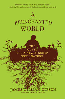 A Reenchanted World by James William Gibson image