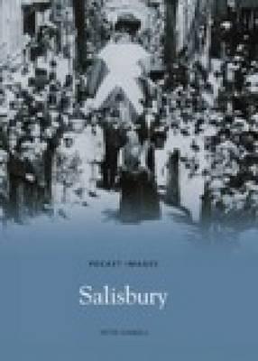 Salisbury by Peter Daniels image