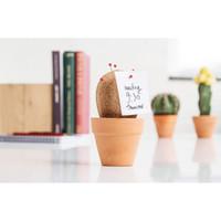 Suck UK: Cork Cactus Desk Tidy image