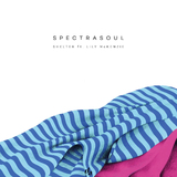 Shelter (LP) by Spectrasoul