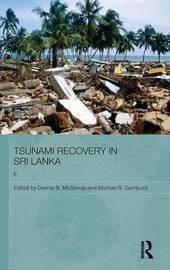 Tsunami Recovery in Sri Lanka image
