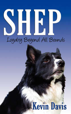 Shep Loyalty Beyond All Bounds by Kevin Davis (Beller Family Professor of Business Law, New York University School of Law) image