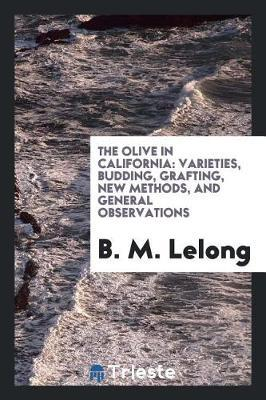 The Olive in California by B M Lelong