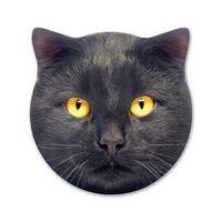Splosh Kitty Ceramic Coaster - Max