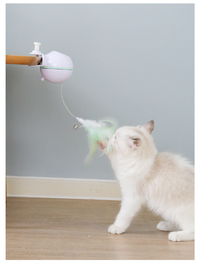 2 in 1 Electronic Action Cat Toy image