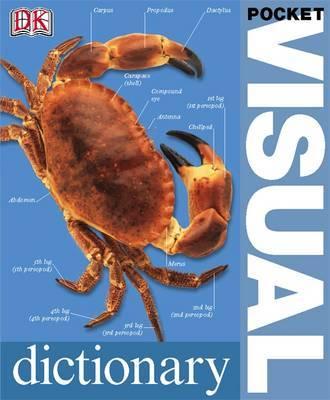 Pocket Visual Dictionary by DK image