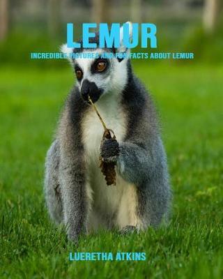 Lemur by Lueretha Atkins