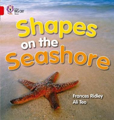Shapes on the Seashore by Frances Ridley image