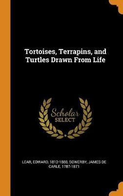 Tortoises, Terrapins, and Turtles Drawn from Life by Edward Lear