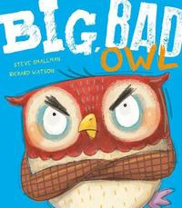 Big, Bad Owl by Steve Smallman
