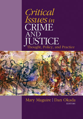 Critical Issues in Crime and Justice image