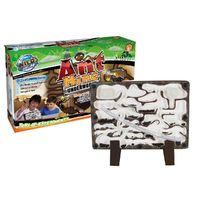 Wild Science: Ant Mine - Science Kit