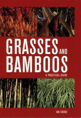 Grasses and Bamboos by Ian Cooke