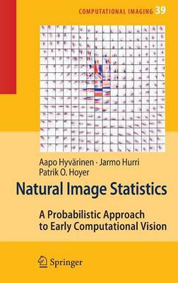 Natural Image Statistics by Aapo Hyvarinen image