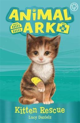 Animal Ark, New 1: Kitten Rescue by Lucy Daniels image