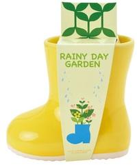 Rainy Day Garden: Yellow Boot Mini Plant Kit - Chamomile