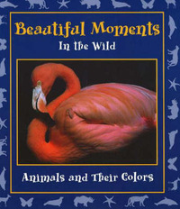 Beautiful Moments in the Wild: Animals and Their Colors by Stephanie Maze image
