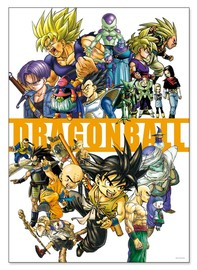 Dragon Ball: Art Poster
